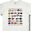 Childrens T Shirts