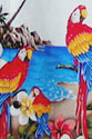 Parrots & Tropical birds clothing