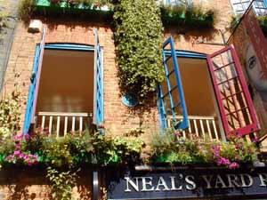 Neals_Yard_Monty_Python_Blue_Plaque_300.jpg